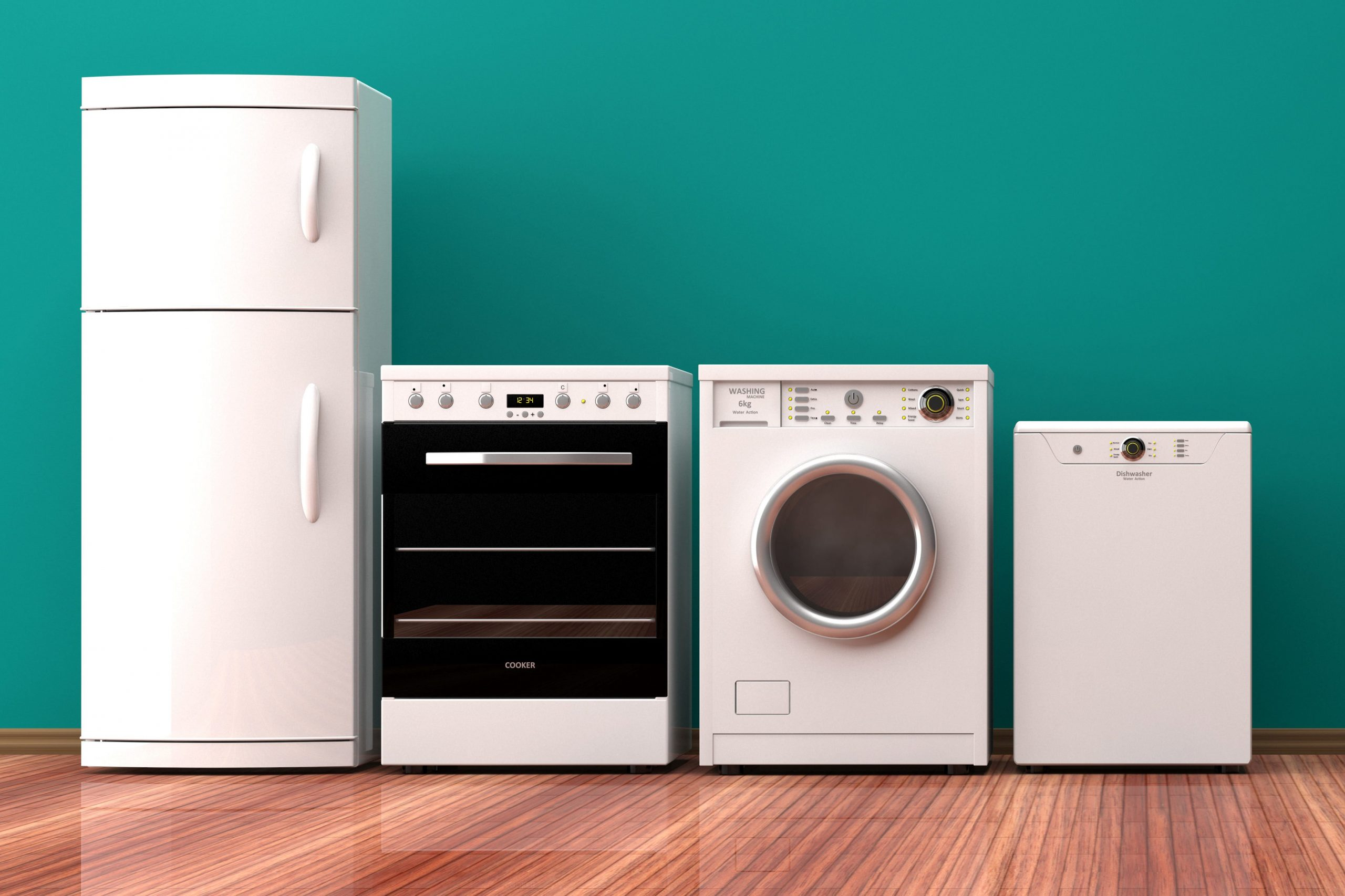 household appliances in an Abbotsford BC home.